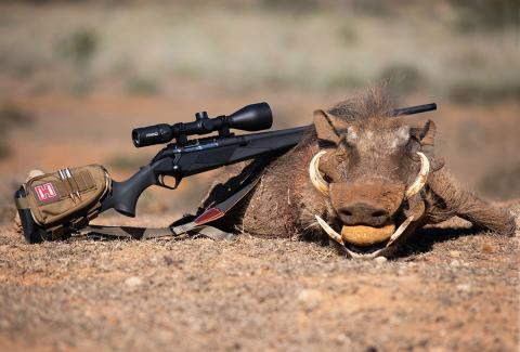 benelli lupo and warthog