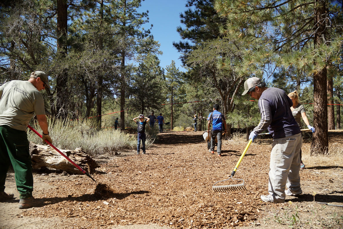 volunteers working on trail