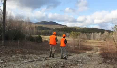 Hunting in Blaze orange