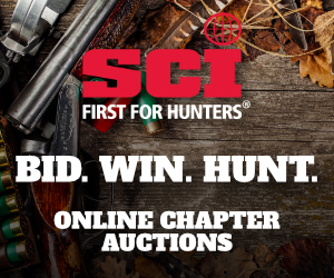 300x250_chapter-auctions